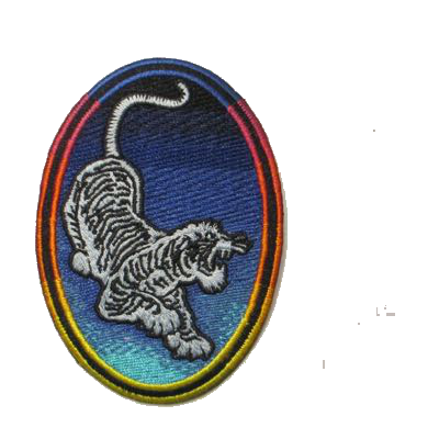 Tiger Grateful Dead Patch